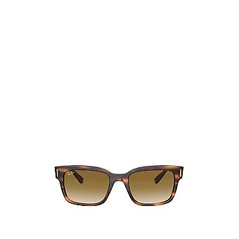 Ray-Ban RB2190 occhiali da sole uomo havana a righe