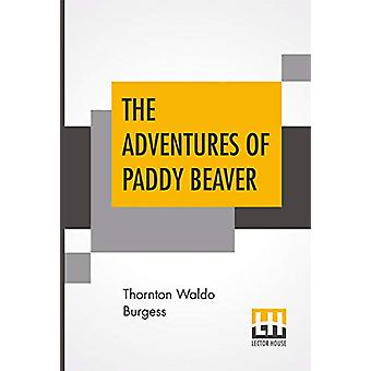The Adventures Of Paddy Beaver by Thornton Waldo Burgess - 9789353427