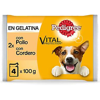 Pedigree Wet Food for Dogs Multipack in Chicken and Lamb Flavor Jelly