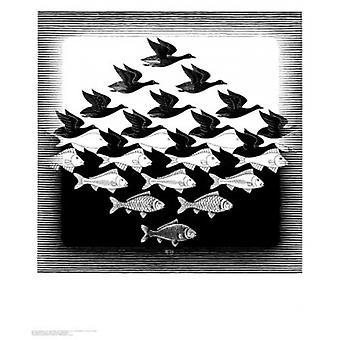 Himmel und Wasser Poster Print von MC Escher (22 x 26)