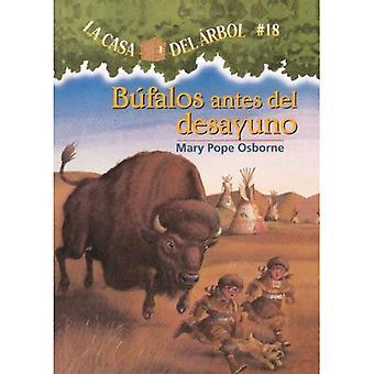 Bufalos Antes del Desayuno = Buffalo vor dem Frühstück (magische Baumhaus)