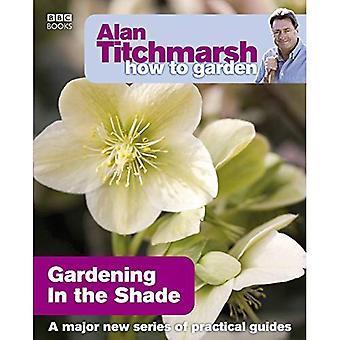 Comment Alan Titchmarsh jardin: jardinage dans l'ombre