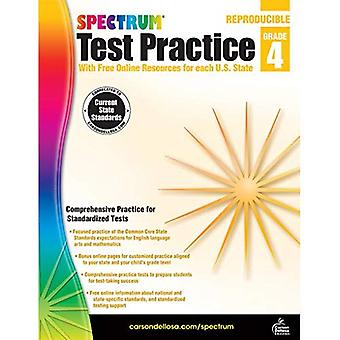 Spectrum Test Practice Grade 4