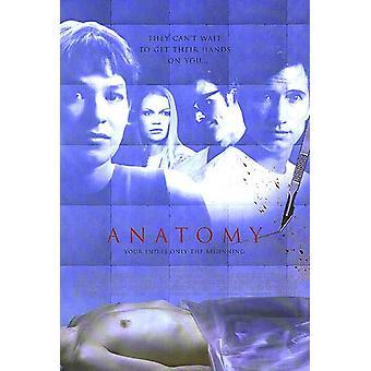 Anatomia (doppio lato) Poster originale del cinema