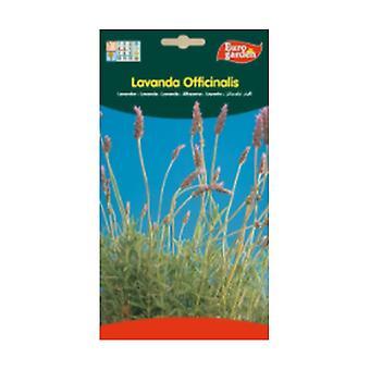 Laventeli Siemenet Officinalis 5 g