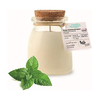 Natural scented candle mint small model 30h 120 g