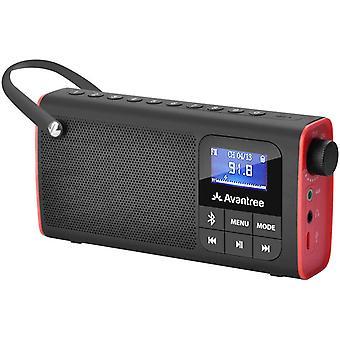 FengChun 3 in 1 Tragbarer FM Radio, Klein Mini Radio mit Bluetooth Lautsprecher SD Karte