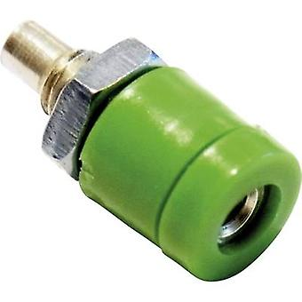 Schnepp BU 2400 Mini jack socket Socket, vertical vertical Pin diameter: 2 mm Green 1 pc(s)