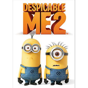 Despicable Me 2 [DVD] USA import