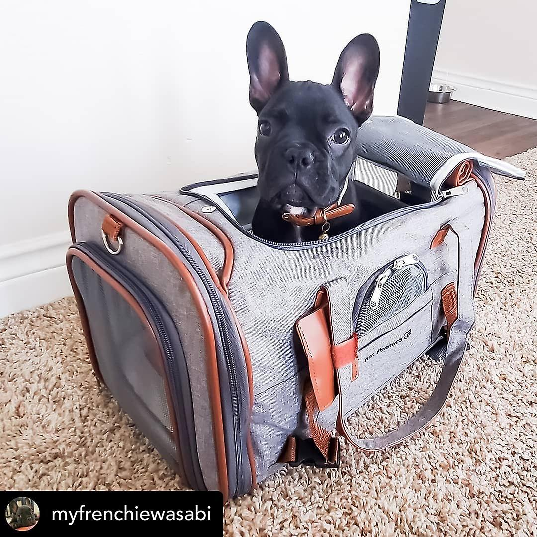 Gold series airline approved tote -  low profile, soft sided premium pet carrier