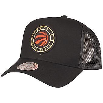 Mitchell & Ness Snapback Cap - HICKORY Toronto Raptors