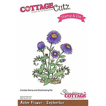 Scrapping Cottage CottageCutz Aster Flower - Septembre