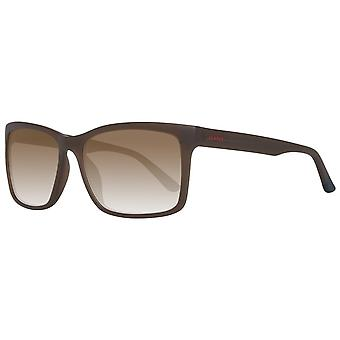 Gant eyewear sunglasses ga7033 5946g