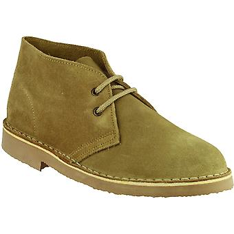 Cotswold Mens Sahara Lace Up Suede leder bekleed Desert Boot Brown