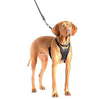 Gesellschaft von Tieren-Pull Harness Hundetraining Kontrolle