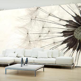 Fototapet - White Dandelion