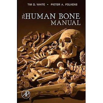 Die menschlichen Knochen-Handbuch