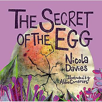 The Secret of the Egg by Nicola Davies - 9781913134600 Book