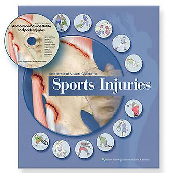 Anatomical Visual Guide to Sports Injuries by Anatomical Chart Compan