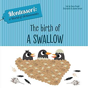 The Birth of a Swallow by Chiara Piroddi - 9788854414051 Book