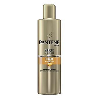 Restorative Shampoo Miracle Repara &protege Pantene (270 ml)