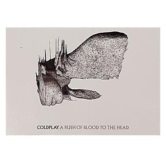 Coldplay - A Rush Of Blood To The Head Postcard