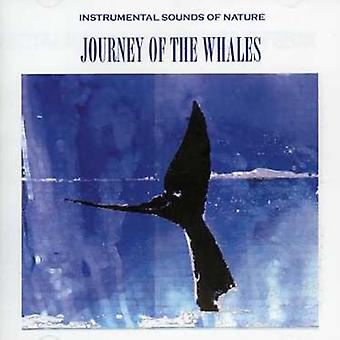 Sounds of Nature - Journey of the Whales [CD] USA import