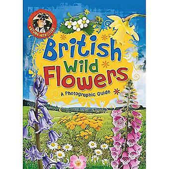 Brittiska vilda blommor (naturen detektiv)