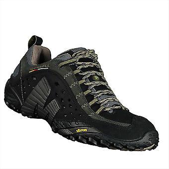 Merrell Intercet 73703 trekking hele året mænd sko