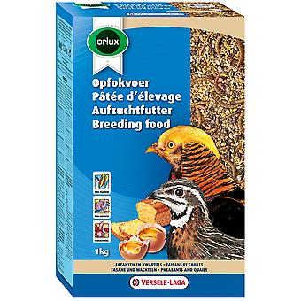 Versele Laga Eggfood Dry - Breeding Food Pheasants & Quail  (Birds , Hand Rearing)