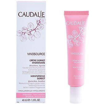 Voedende gezichtscrème Vinosource Caudalie (40 ml)