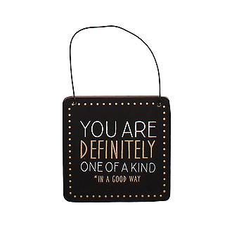 You Are One of a Kind Humorous Hanging Plaque - Gift Item