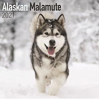 Alaskan Malamute 2021 Wall Calendar by Created by Avonside Publishing Ltd