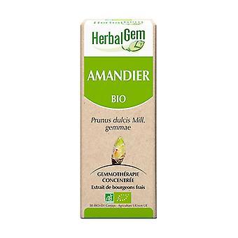 Organic almond 50 ml