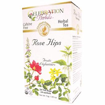 Celebration Herbals Organic Rose Hips Tea, 24 Bags