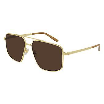 Gucci GG0941S 003 Gold/Brown Sunglasses