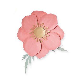 Sizzix Thinlits Die Set - 3pk Icelandic Poppy 665081 Olivia Rose
