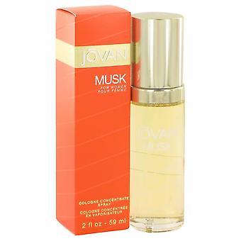 Jovan Musk Colonia Spray de concentrado por Jovan 2 oz Colonia concentrado aerosol