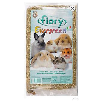 Fiory Pressed Premium Evergreen 1KG hay. (Small pets , Hay)