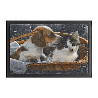 Paillasson saleté piégeage touche des animaux chiens et chats Braun Weiß 40 x 60 cm
