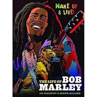 Roman graphique de Bob Marley
