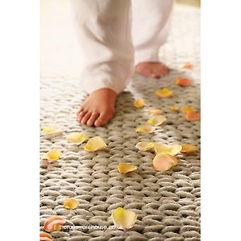 Fusion Oyster Rug