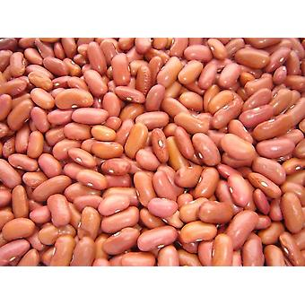 Light Red Kidney Beans -( 22lb )