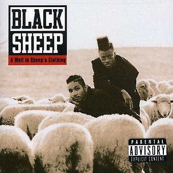Black Sheep - loup dans l'importation de vêtements [CD] USA de brebis