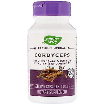 Nature-apos;s Way, Cordyceps, 1 000 mg, 60 capsules végétariennes