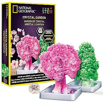 National Geographic Crystal Garden