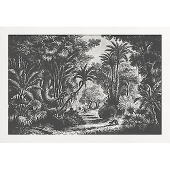 JUNIQE Print - Indian Jungle - Palm Trees Plakat i grå og sort