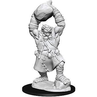 Pathfinder combatte tagli profondi Miniature non verniciate (W11) Orco