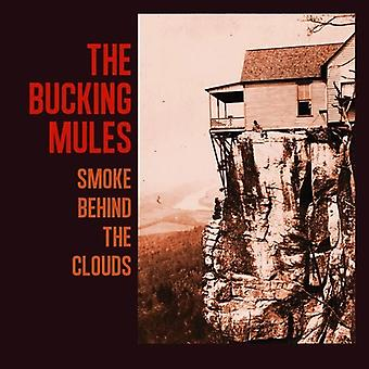 Bucking Mules - Smoke Behind the Clouds [Vinyl] USA import
