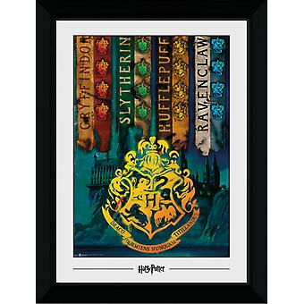 Harry Potter huis vlaggen Collector Print